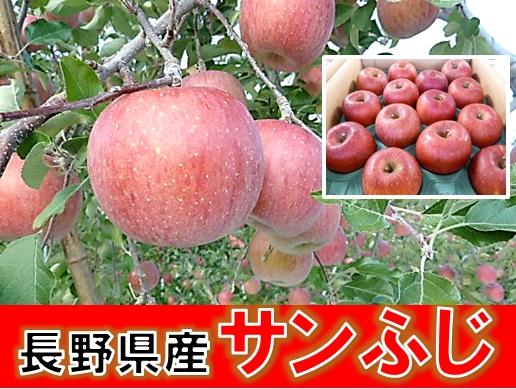 サンふじ,りんご,バナー