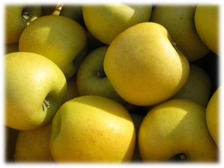 シナノゴールド,産直市場,りんご,産直市場ヤマサン,ジュース